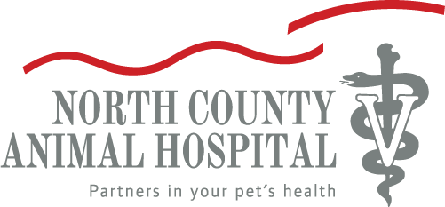 North County Animal Hospital